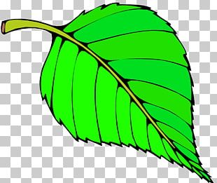 Leaf Free Content Website PNG