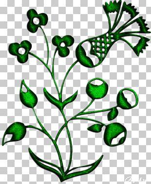 Bird Flower Plant Stem PNG