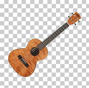 Steel-string Acoustic Guitar Takamine Guitars Musical Instruments Acoustic-electric Guitar PNG