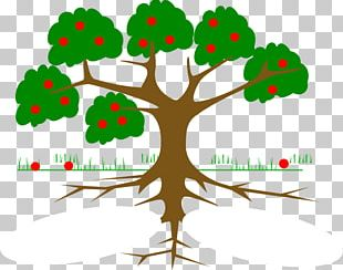 Tree Of Life Root PNG