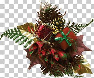 Christmas Ornament Leaf Flowering Plant PNG