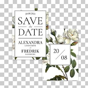 Wedding Invitation Save The Date Convite Paper PNG