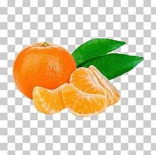Juice Tangerine Mandarin Orange Photography PNG