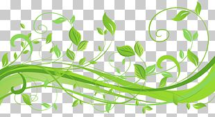 Leaf Text Clipart PNG
