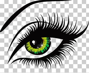 Eyelash Drawing PNG