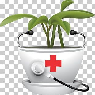 Medicinal Plants Therapy Traditional Medicine Drug PNG