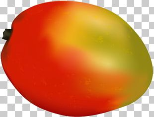 Tomato Apple Orange PNG