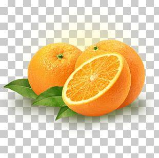 Citrus × Sinensis Sweet Lemon Orange Fruit Food PNG