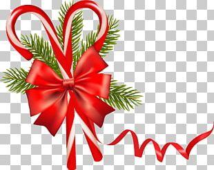 Christmas Ornament Christmas Card PNG