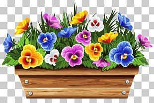 Flowerpot Flower Box Stock Photography PNG