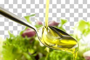 Olive Oil Cooking Coconut Oil Vegetable Oil PNG