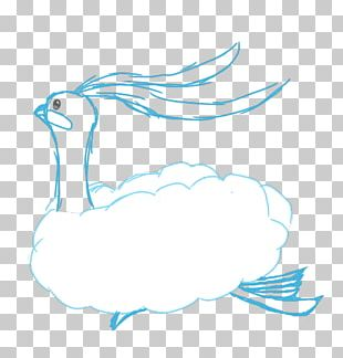 Duck Bird Feather Goose Cygnini PNG