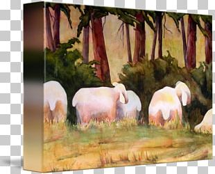 Cattle Sheep Landscape Painting Livestock PNG