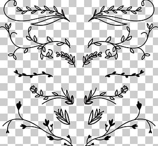 Flower Ornament Euclidean PNG