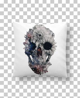 Calavera Human Skull Symbolism Skull Art Skeleton PNG