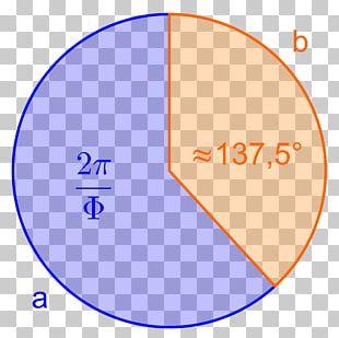 Circle Golden Ratio Angle Cirkelbue Mathematics PNG