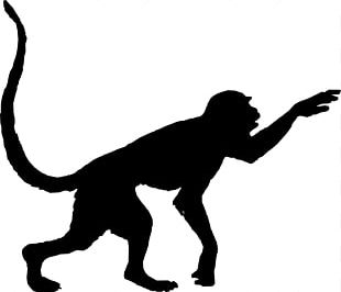 Red-faced Spider Monkey Silhouette PNG