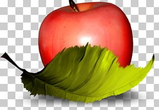 Apple Fruit Vegetable PNG