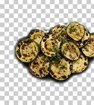 Vegetarian Cuisine Leaf Vegetable Recipe Zucchini Dish PNG