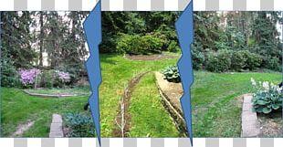 Backyard Property Grasses Fence Tree PNG