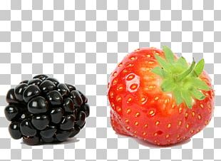 Strawberry Frutti Di Bosco BlackBerry Fruit PNG
