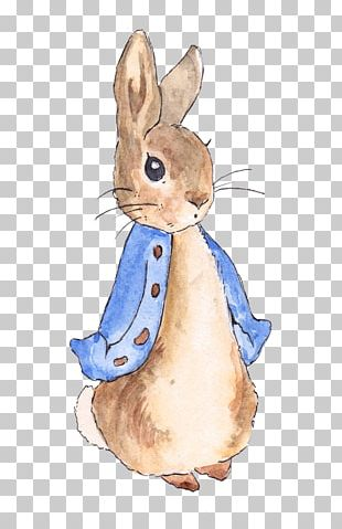 The Tale Of Peter Rabbit The Tale Of The Flopsy Bunnies Create Your Own Peter Rabbit Nursery PNG