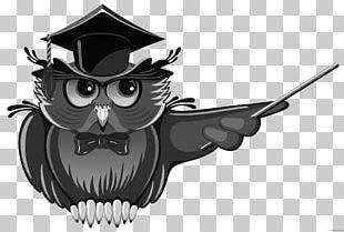 Owl Teacher Education School PNG