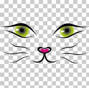 Cat Cartoon PNG