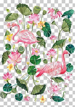 Flamingo Printing T-shirt Illustration PNG