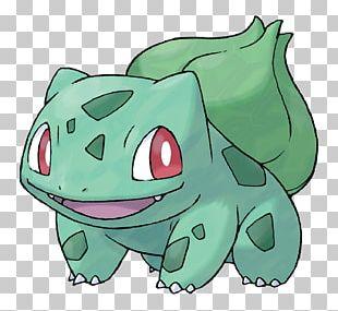 Pokémon FireRed And LeafGreen Bulbasaur Venusaur Squirtle PNG