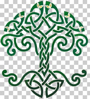 Tree Of Life Celtic Sacred Trees Celts Celtic Knot Symbol PNG