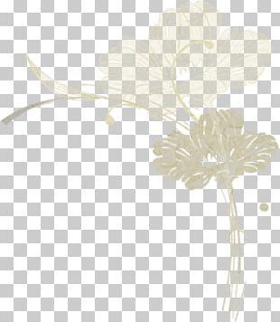 Petal Floral Design Leaf Plant Stem PNG