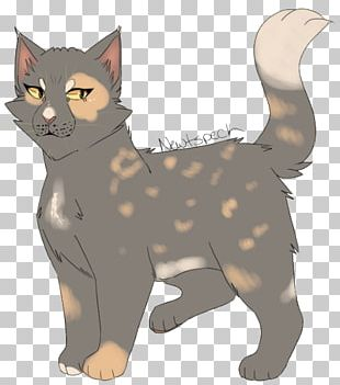 Manx Cat Whiskers Kitten Tabby Cat Domestic Short-haired Cat PNG