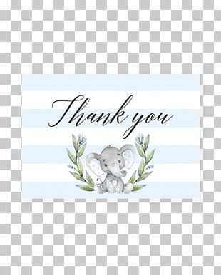 Baby Shower Greeting & Note Cards Letter Of Thanks YouTube Infant PNG