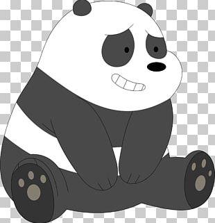 Giant Panda Panda And Polar Bear Ice Bear Grizzly Bear PNG