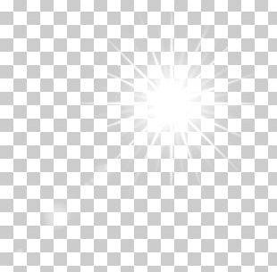 Euclidean Paper PNG