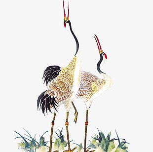 Painting Red-crowned Crane PNG