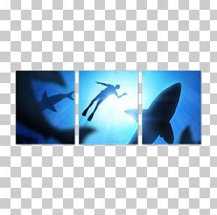 Great White Shark Swimming Hammerhead Shark Shark Finning PNG