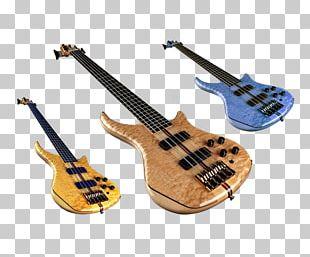 Bass Guitar Musical Instrument String Instrument PNG