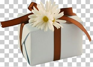 Wish Happy Birthday To You Greeting & Note Cards Birthday Cake PNG
