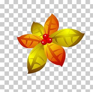 Autumn Leaf Color Petal PNG
