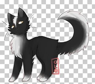 Black Cat Kitten Whiskers Horse PNG