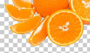 Citrus Xd7 Sinensis Mandarin Orange Fruit Orange Slice PNG