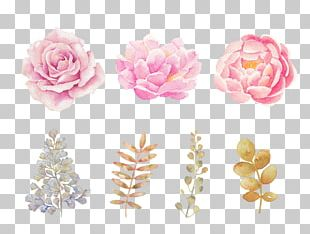Pink Flowers Pink Flowers Watercolor Painting PNG