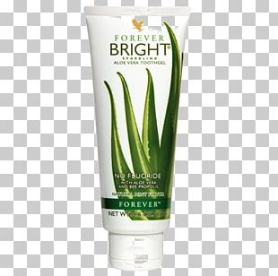 Aloe Vera Toothpaste Forever Living Products Gel PNG