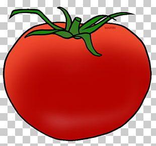 Bush Tomato Chocolate Cultivar Auglis PNG