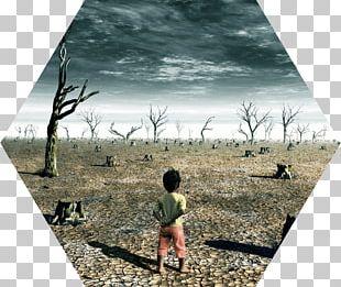 Global Warming Acid Rain Climate Change Human Impact On The Environment PNG