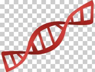 Genetics Computer Icons Genetic Testing PNG