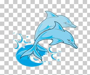 Dolphins In The Ocean Free Content PNG