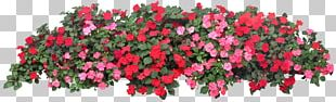 Flower Garden Grow Light Raised-bed Gardening PNG